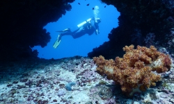 Oman_diving_extra_divers_sifah